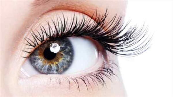 Healthy ways to help protect your eyesight and ward off vision loss. — HealthDigezt.com