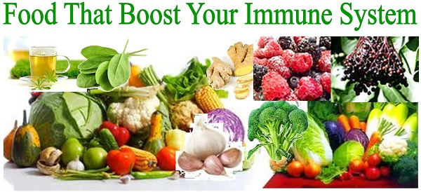 Foods That Boosts Your Immune System Healthdigezt Com