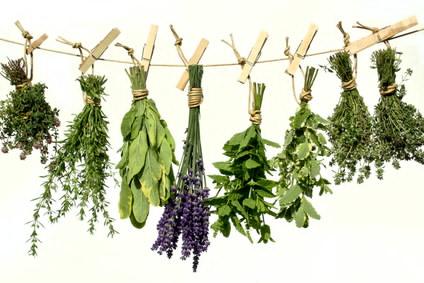 Dried_Herbs