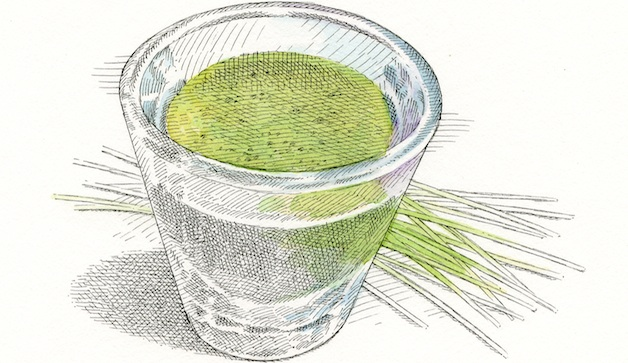 5 Natural Remedies For All-Day Energy