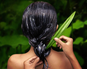 Aloe Vera Hair Repair Secret DIY