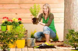 gardening-hobby-opt