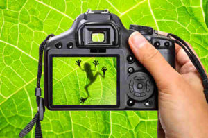 photography-hobby-opt