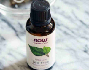 tea-tree-oil-for-hair