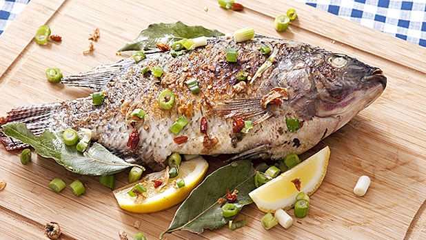 Is tilapia good or bad for you for Is tilapia fish good for you