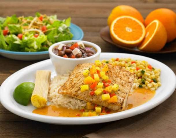 What is the Ketogenic Diet? — HealthDigezt.com