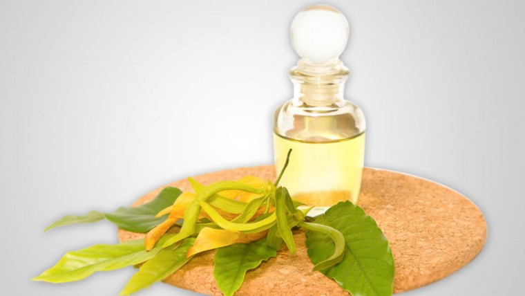 მცენარეული ზეთი გაღრმავებას potency