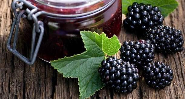 blackberry-leaf-tea